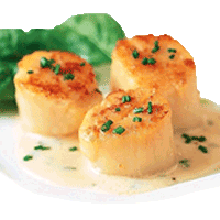 Coquille St-Jacques du Chef ou gambas